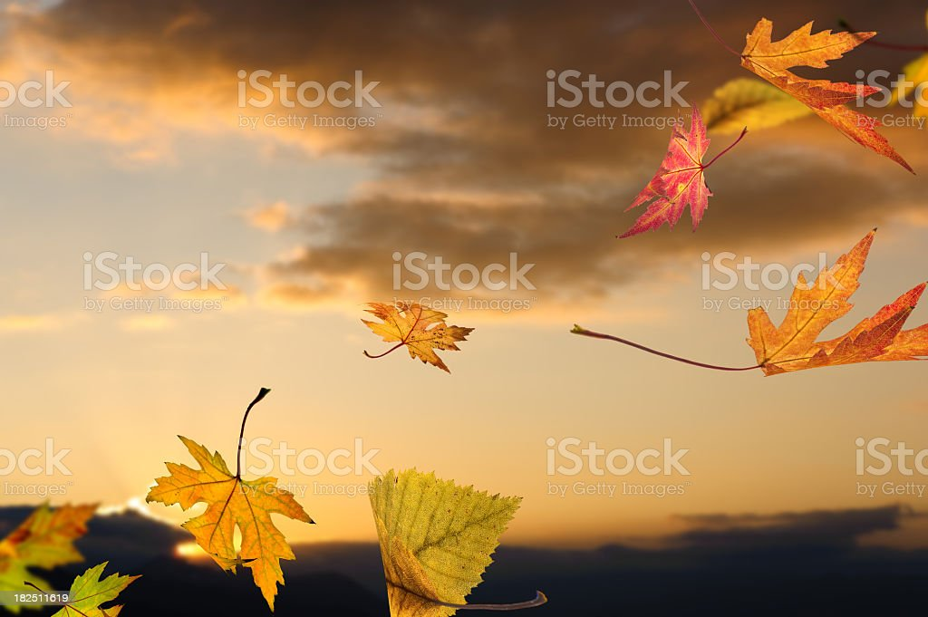 Falling From The Sky royalty-free stock photo