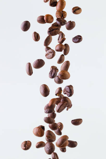 falling grains of roasted coffee on a white background - coffee beans stock photos and pictures