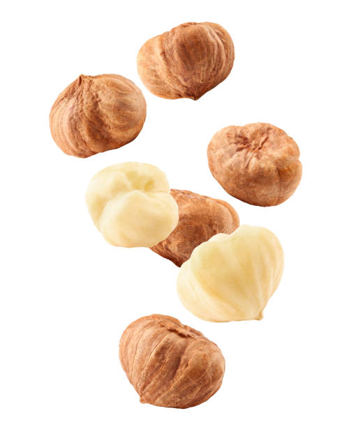 falling hazelnut peeled, isolated on white background, clipping path, full depth of field - nocciola foto e immagini stock