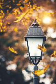 Close-up of street light with falling autumn leaves.