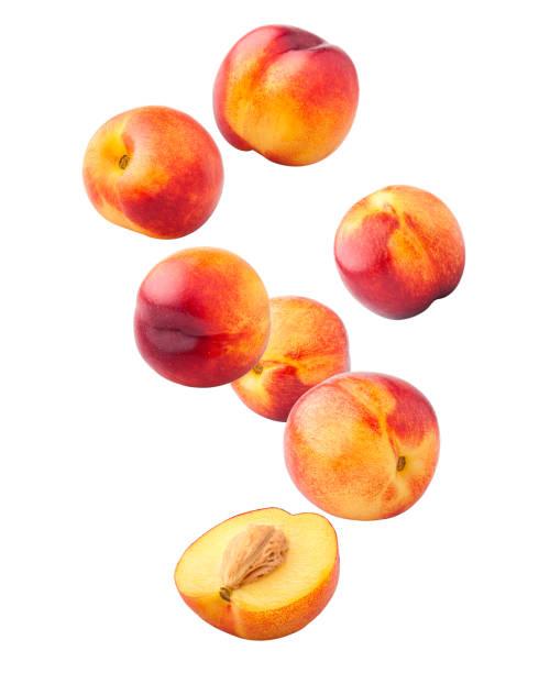 在白色背景、剪裁路徑、全場深度上分離的花蜜或桃掉落 - 桃 個照片及圖片檔