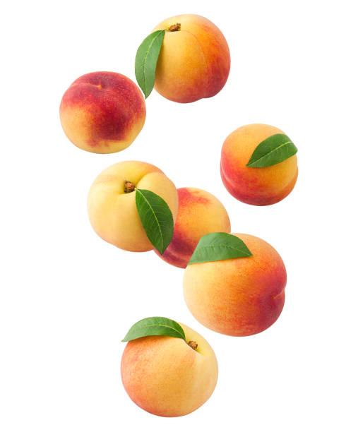 fallende pfirsich isoliert auf weißem hintergrund, clipping-pfad voller schärfentiefe - peach stock-fotos und bilder