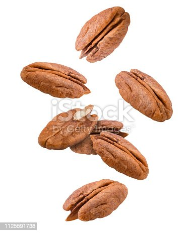 Falling pecan, nut, isolated on white background, clipping path, full depth of field