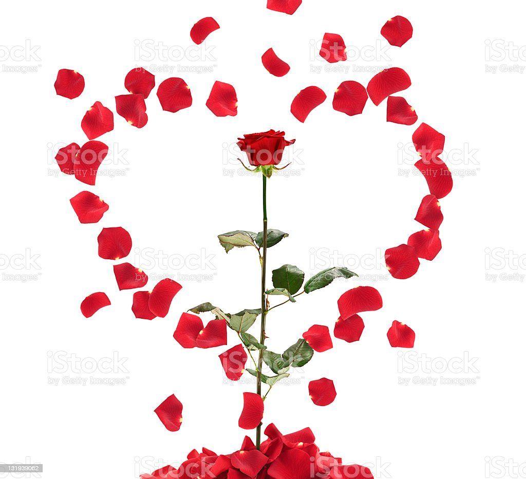 Falling Petals Heart Shape royalty-free stock photo