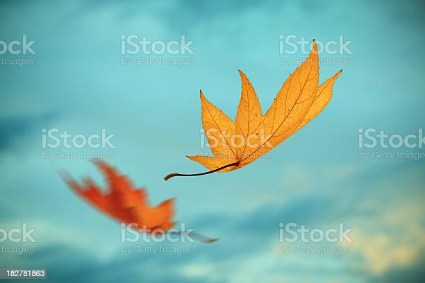 Photo of Falling