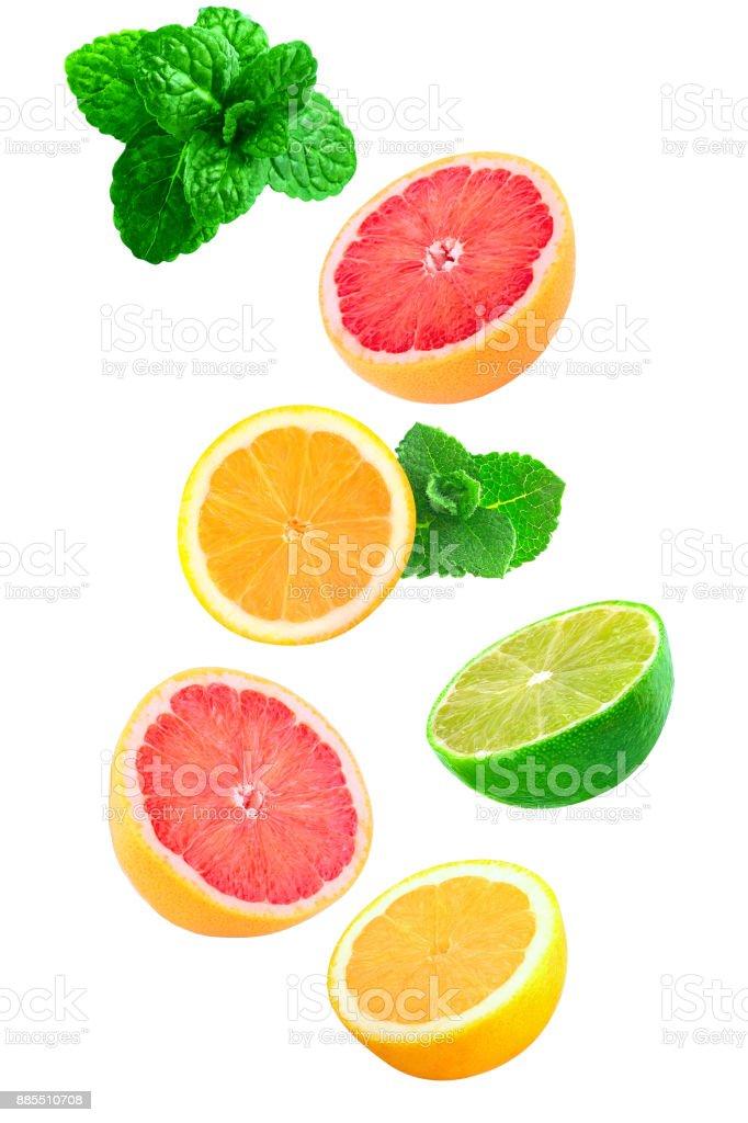 Falling pieces of mint, lemon, grapefruit - foto stock