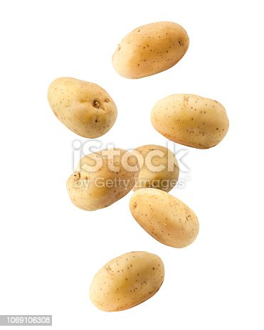 Falling potato, isolated on white background, clipping path, full depth of field