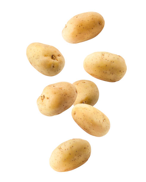 falling potato, isolated on white background, clipping path, full depth of field - ziemniak zdjęcia i obrazy z banku zdjęć