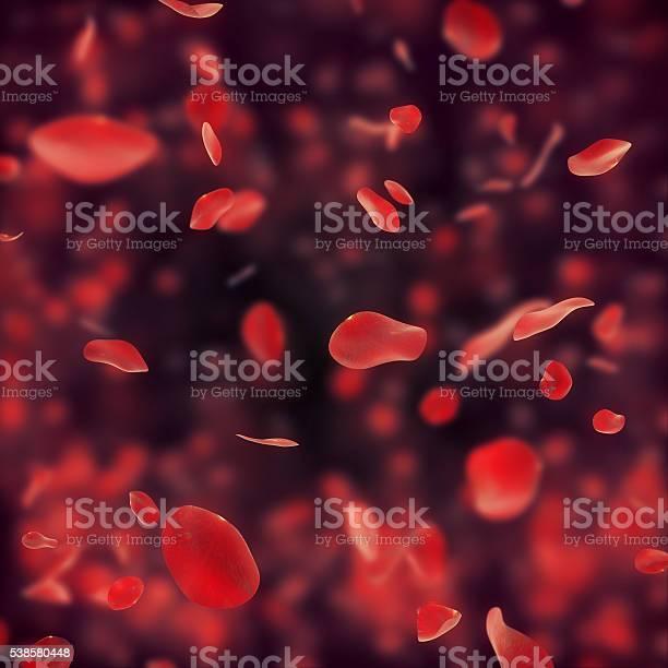 Falling red rose petals on dark background picture id538580448?b=1&k=6&m=538580448&s=612x612&h=kkdztno419bklboqhkpelt8v2lwxzz05bawzsnwdu9g=