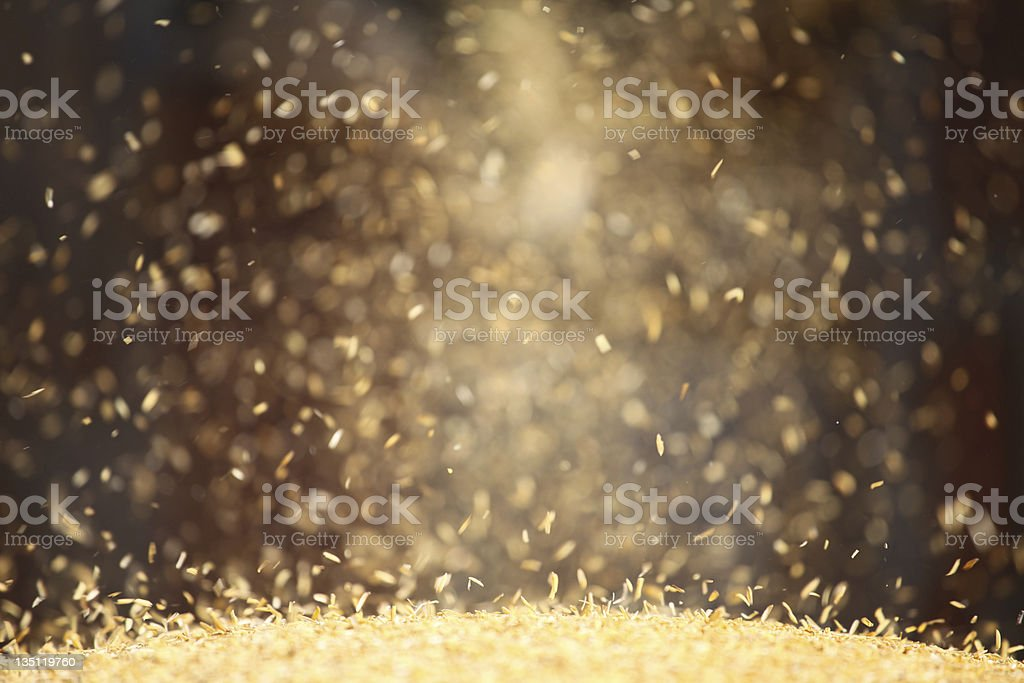 Falling rice in a mill stock photo
