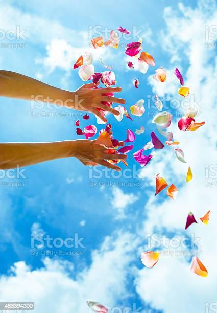 Falling rose petals picture id483394300?b=1&k=6&m=483394300&s=612x612&h=qjn qk3104mq4bmkphqweapigdkrraz8popmfh8rwts=