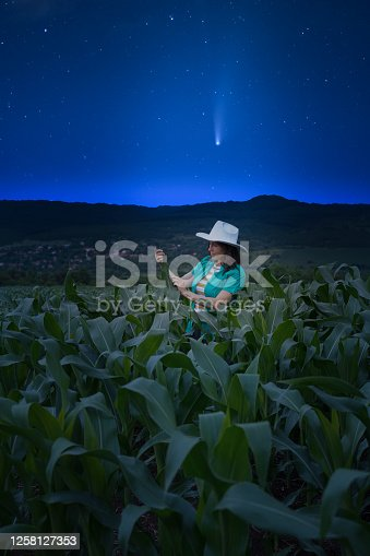 Star trails of falling meteors. Dreamlike night scene. Confident Young Farmer examining harvest in an Organic Farm on a summer night. Agronomists checking out the condition of the plants in a corn field before harvest. Working late.