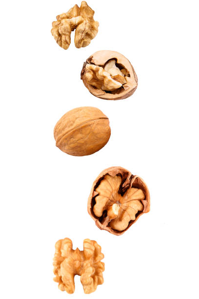 Falling walnuts on white stock photo