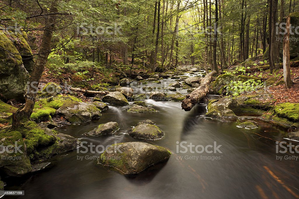 Falls Brook royalty-free stock photo