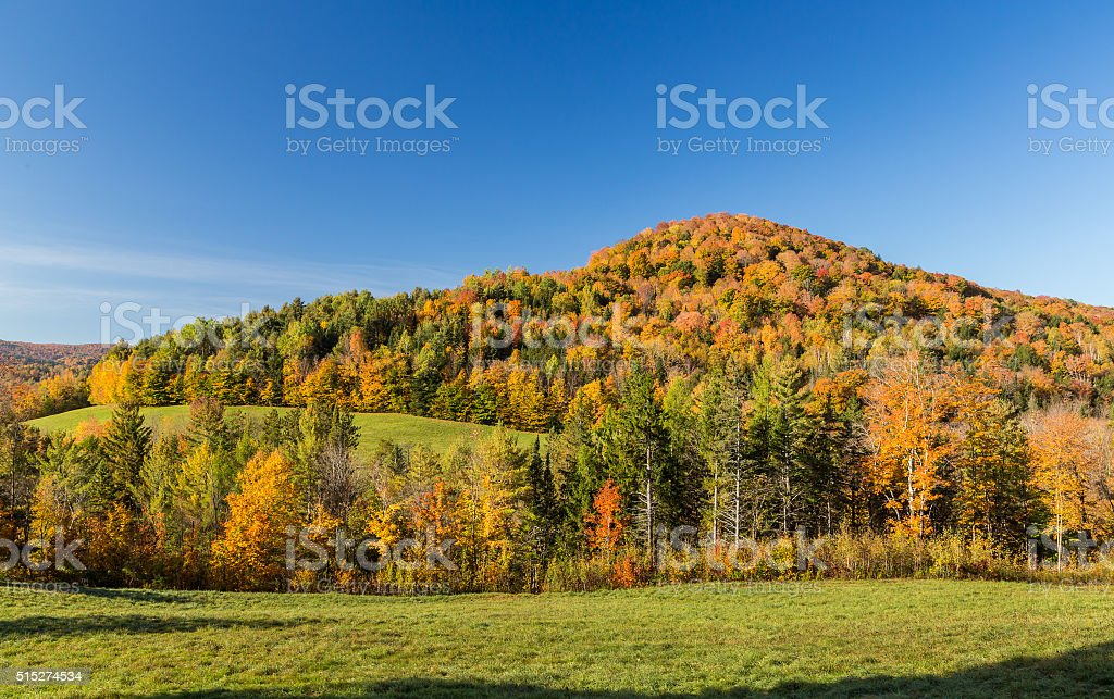 Falls foliage in Vermont countryside. stock photo