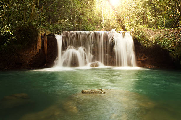ys falls in jamaica - waterfall stock photos and pictures