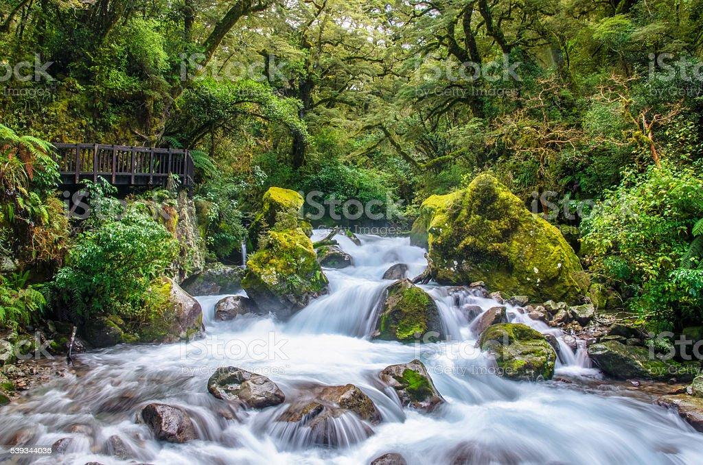 Falls in Lake Marian,New Zealand stock photo