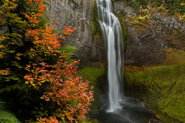 Cascate in autunno - foto stock