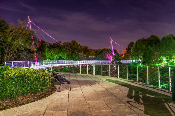 Falls Park in Greenville, South Carolina, USA. Falls Park in Greenville, South Carolina, SC, USA at Night. liberty bridge budapest stock pictures, royalty-free photos & images