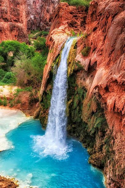 Falls with blue water, Havasu Falls, Grand Canyon, Arizona, USA stock photo