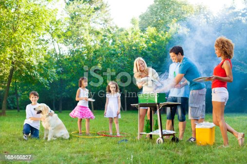 istock Families enjoying a barbecue. 168466827