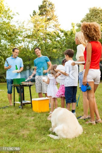 istock Families enjoying a barbecue. 171282765