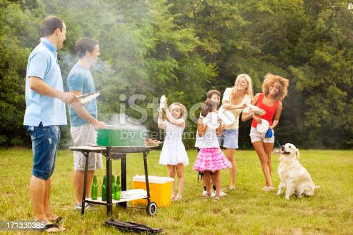 istock Families enjoying a barbecue. 171330385