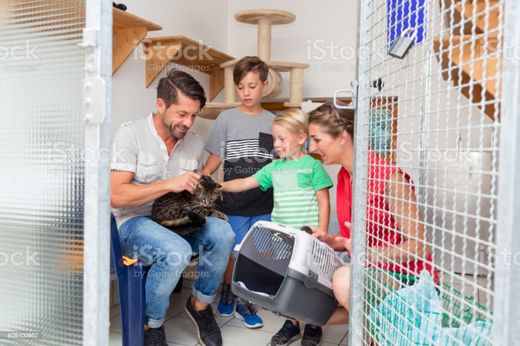 Family adopting cat from animal shelter stock photo