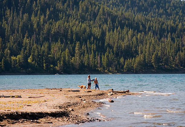 Family and dog at beach of forest lake stock photo