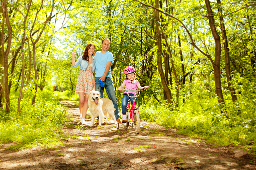 Family and dog enjoying a walk in the forest