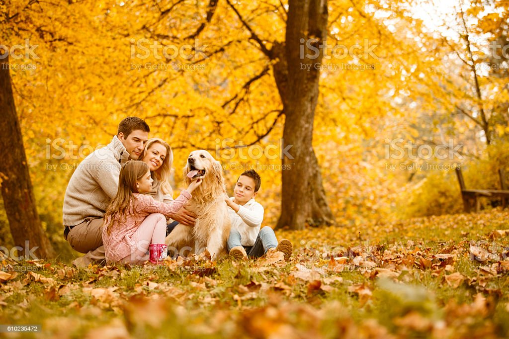 Family and dog in autumn park stock photo