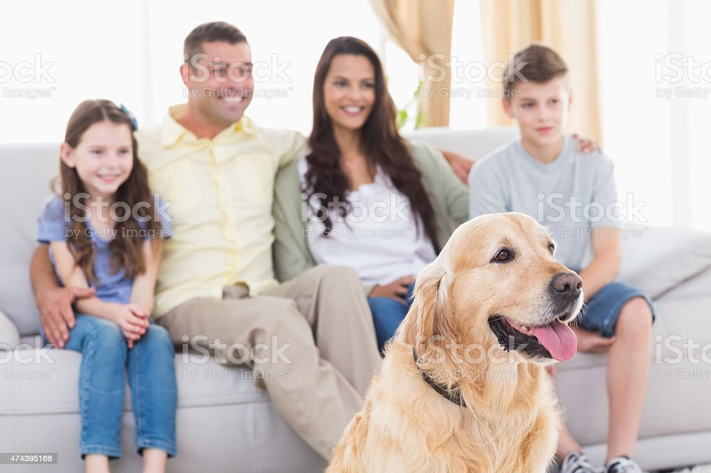 Family and dog watching TV together stock photo