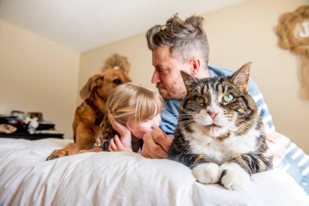 Family and pets picture id1217579493?b=1&k=6&m=1217579493&s=612x612&w=0&h=8bsslxanhyzgq izc3ptjlmktlxbr86bgckcc 5qkay=
