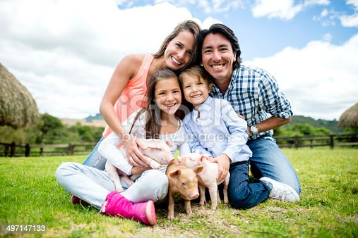 Happy family at an animal park with pigs