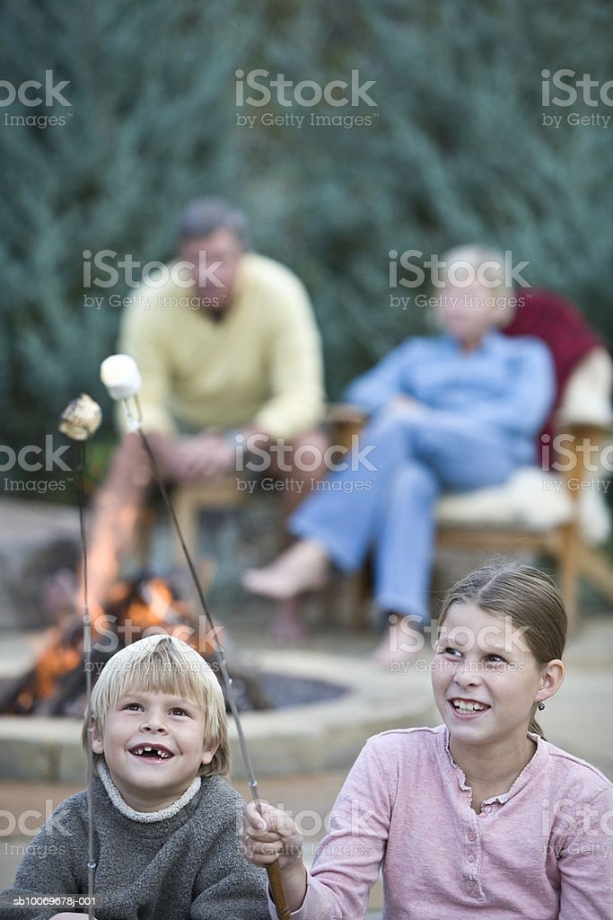 Family at campfire, two children (6-9) holding roasted marshmallows in foreground foto de stock libre de derechos