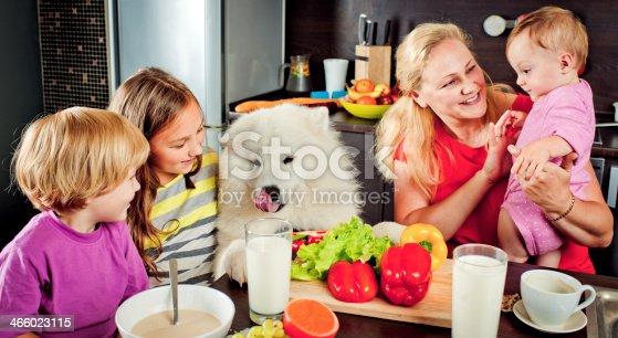 istock Family at kitchen 466023115