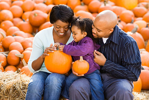 Family at pumpkin patch. stock photo