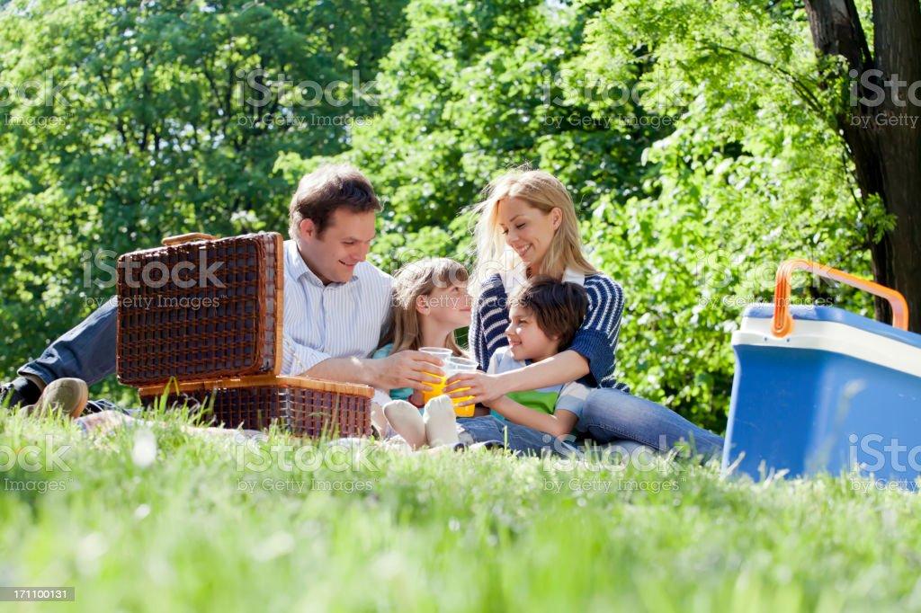 Family at the picnic stock photo