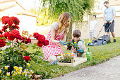 Cute little girl assisting her mother planting flowers in a backyard, while father and son in background mowing grass. Teamwork to make their backyard fantastic place for their free time.