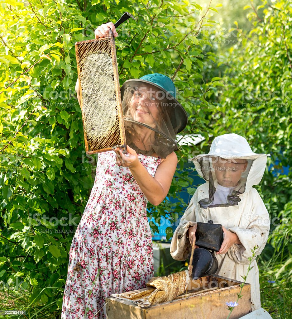 Family beekeepers business stock photo