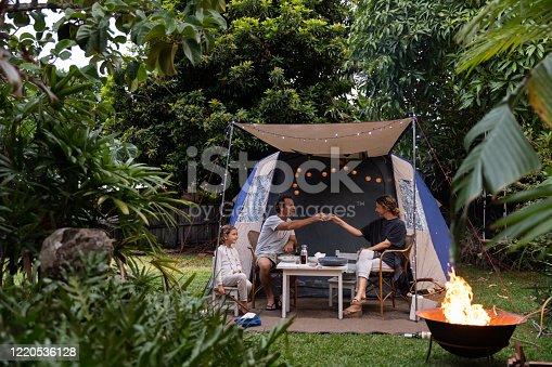 istock Family Camping in Backyard 1220536128