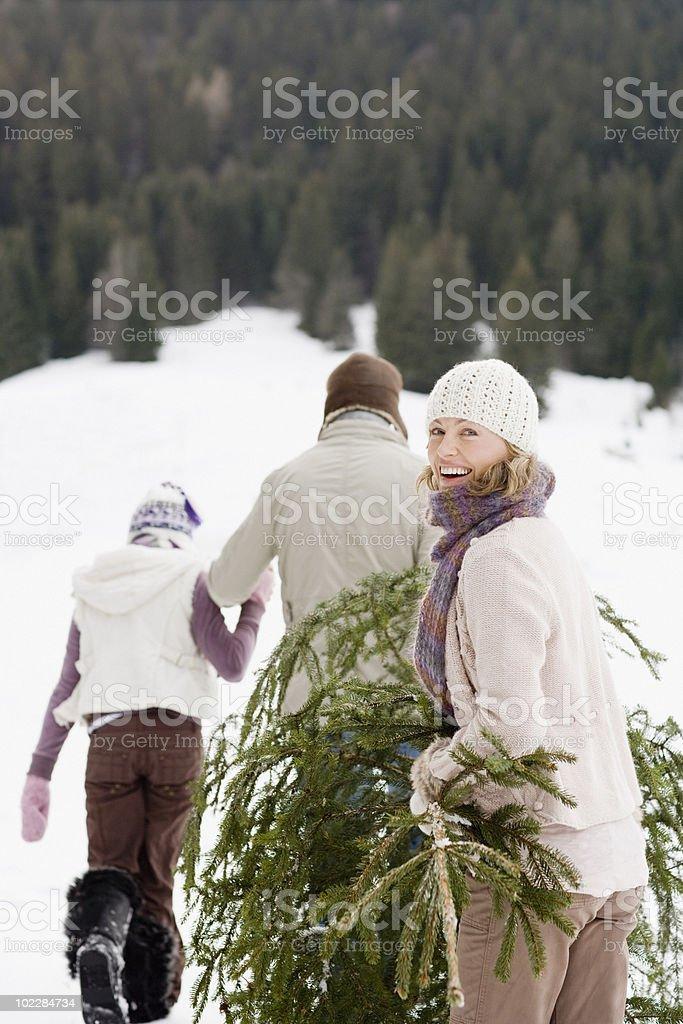 Family carrying Christmas tree through snow royalty-free stock photo