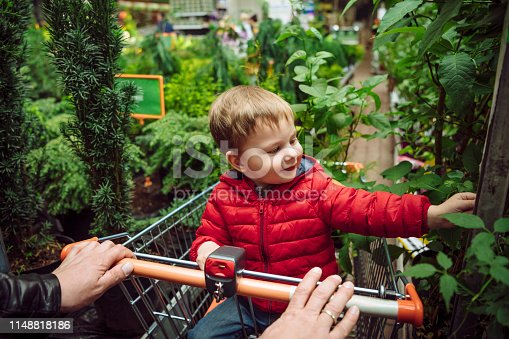 Little boy and his father shopping in a garden store