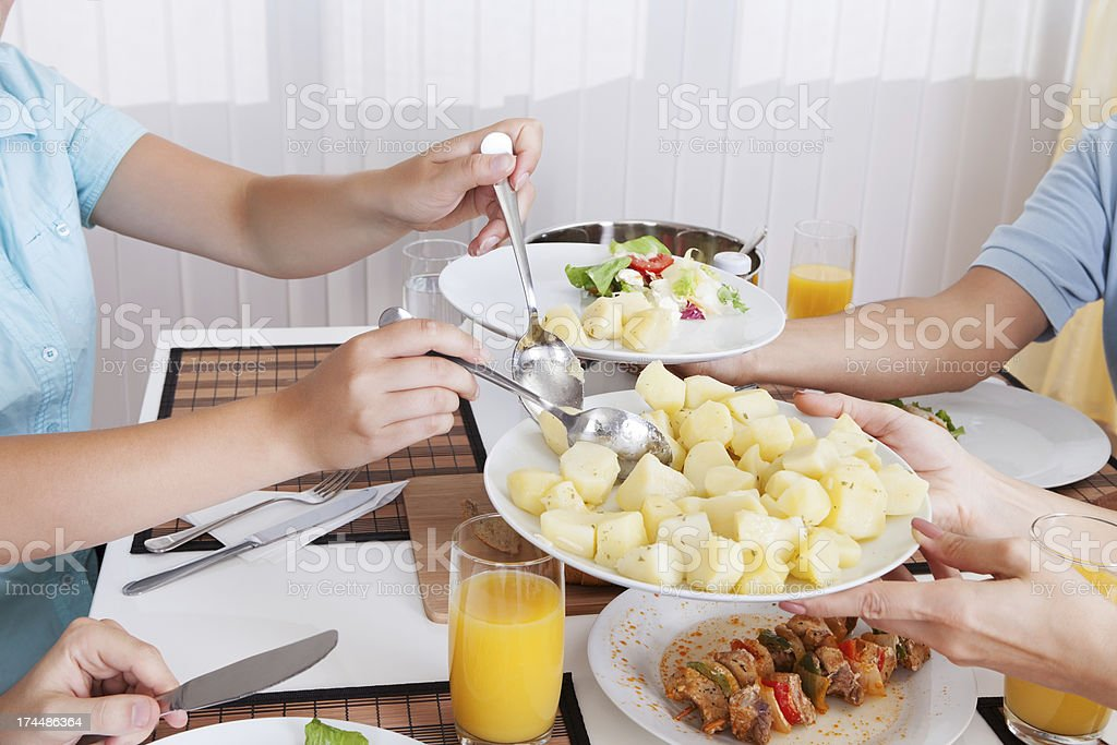 Family eating a cold lunch royalty-free stock photo