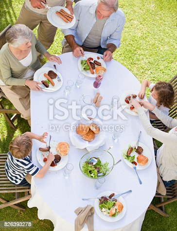istock Family eating in the garden 826393278