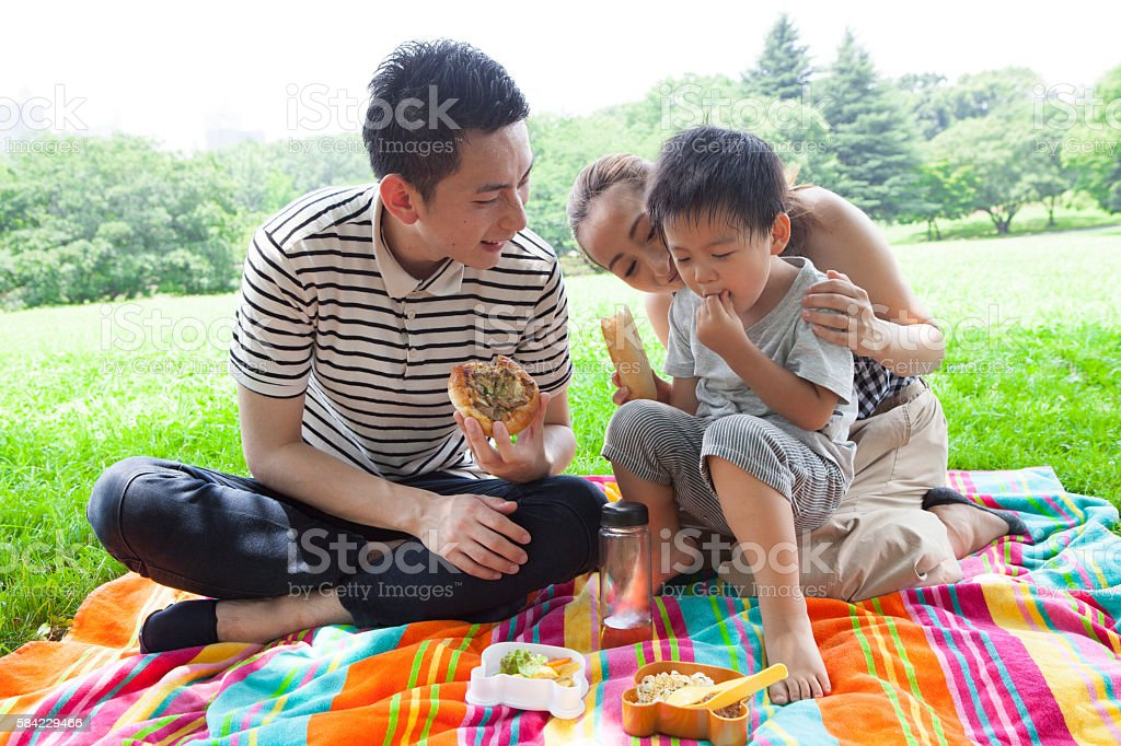 Family eating lunch in the park stock photo