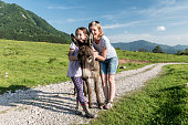 Family Enjoy Playing with the Donkey on Mountain Meadow