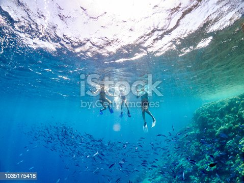 Family Enjoy Snorkeling In The Red Sea