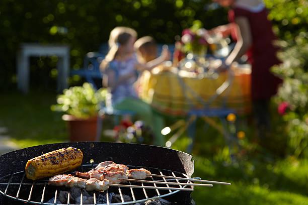 barbecue an einem sonnigen abend - sommerferien baden württemberg stock-fotos und bilder