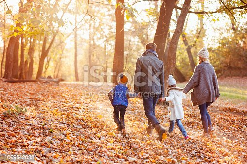 Happy family walking on the beautiful autumn day in the leafy autumn scenery.